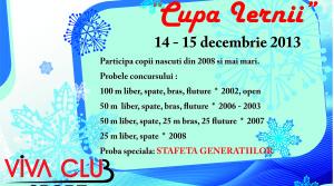 Cupa Iernii Decembrie 2013